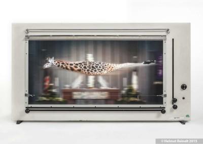 Objekt En Passant - Giraffe