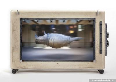 Objekt En Passant - Rhino